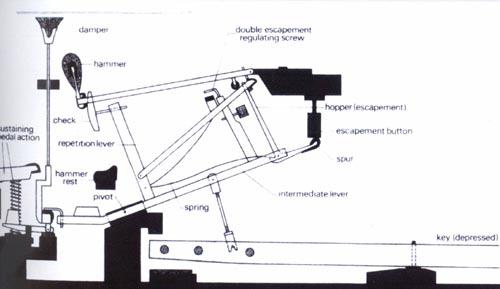 机械手指结构图