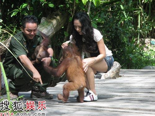 马来西亚访濒临灭绝动物